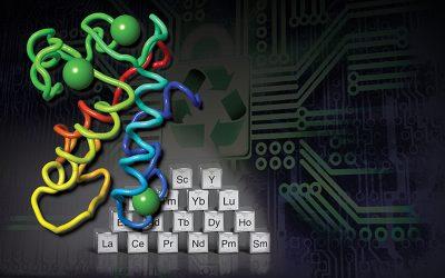 Forradalmi találmány: az elektronikai hulladékokat fogyasztó fehérje ritka földfémeket hoz létre